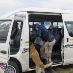 Mamabolo intervenes to curb taxi violence at Bosman station